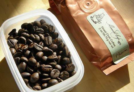 Эсклюзивное индонезийское кофе «King of Luwak» продукт жизнедеятельности виверры