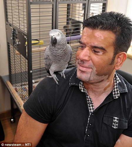 Попугай Митту говорит на 2-х языках