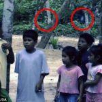 Пришельцы в тропических лесах Амазонки: фотофакты