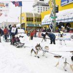 Традиционные гонки собачьих упряжек на Аляске — 1600 километров