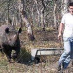Фермер из ЮАР потерял своего друга: черного носорога по кличке Mokwena