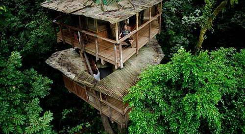 Поселение Finca Bellavista в джунглях Коста-Рики