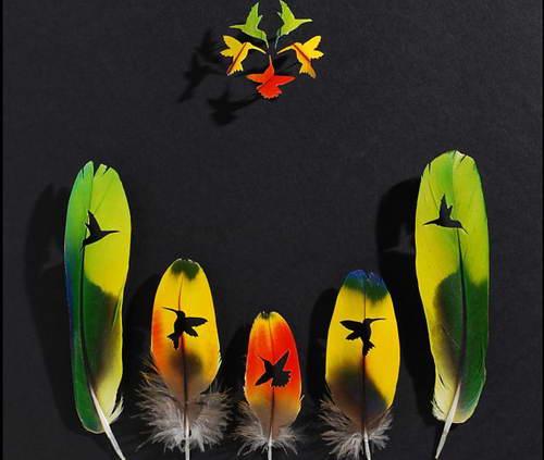 Крис Мэйнард делает художественные работы из перьев птиц