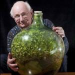 Растение, которое уже 40 лет живет в закупоренной бутылке без воздуха