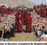Мьянма новости: Буддисты устроили геноцид мусульман