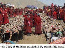 мьянма геноцид мусульман