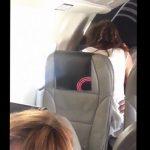 Секс в салоне самолет
