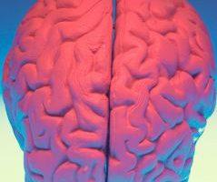 Доказано учеными: Шестое чувство существует