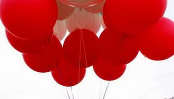 В Техасе 16 человек разбились на воздушном шаре