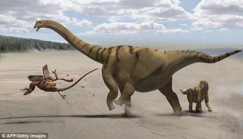 Обнаружены следы динозавров которые защищались при помощи ног