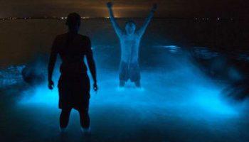 Удивительное светящееся озеро Гипсленд в Австралии