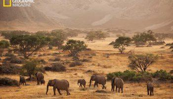 Невероятные фотографии Намибии – техника рисунка