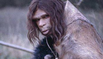 Нашлись следы неандертальцев в России уточняющие время их жизни