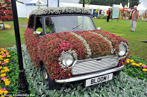 Ретро 60-х - Mini в цветах