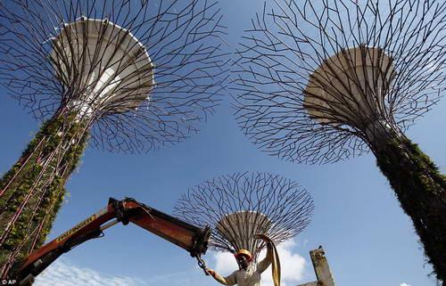 Деревья из бетона и металла