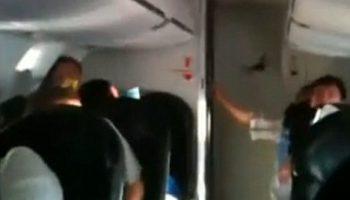 Летучая мышь сорвала рейс авиалайнера в США