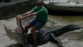 Женщина поймала и убила одного из самых больших крокодилов во Флориде