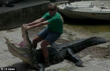 Конни Хэкок и 4-х метровый крокодил