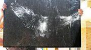 Птичьи автографы: отпечатки сов и голубей на стеклах окон
