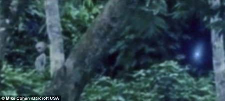 Пришельцы в лесах Амазонки