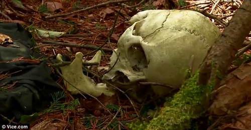 останки человека на Фудзи
