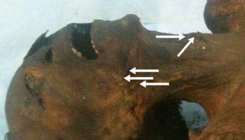 Криминалисты доказали, что Рамзесу III младшая жена перерезала горло