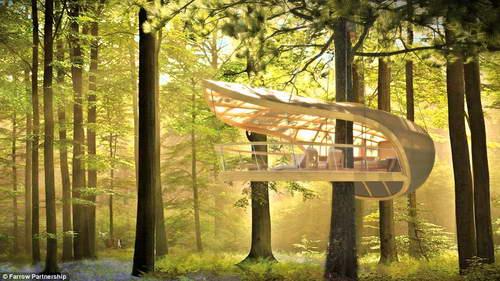 Вилла - люкс в сердце канадского леса