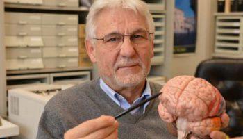 Сканируя мозг, можно распознавать потенциальных убийц и насильников