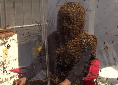 Хуан Карлос Ногез Ортис пчелы рекорд Гиннеса