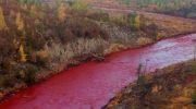 Реки Норильска стали кровавыми из-за утечки на ТЭЦ-3