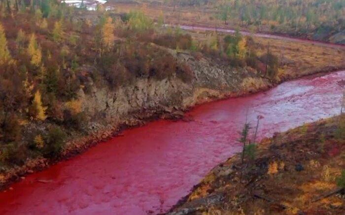 Реки Норильска стали кровавыми